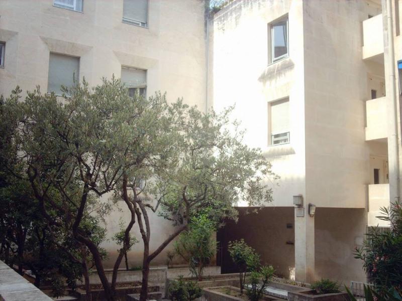 Rental apartment Avignon 435€ CC - Picture 1