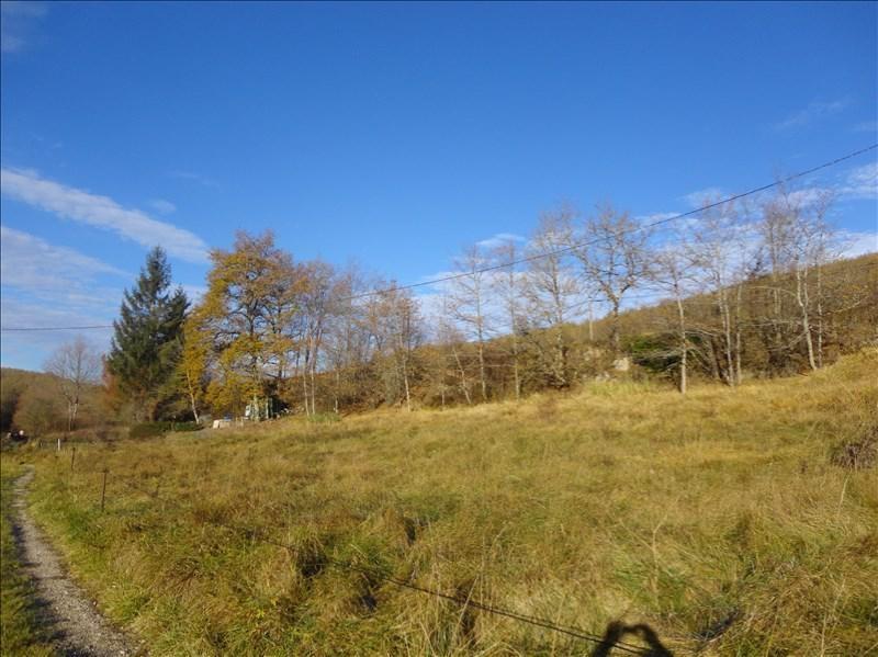 Vente terrain lavelanet 6919 m 50 000 euros immobiliere de mirepoix - Vente terrain en indivision ...