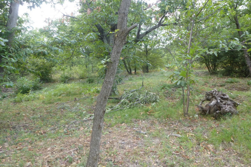 Vente terrain Vesseaux 58 000€ - Photo 1