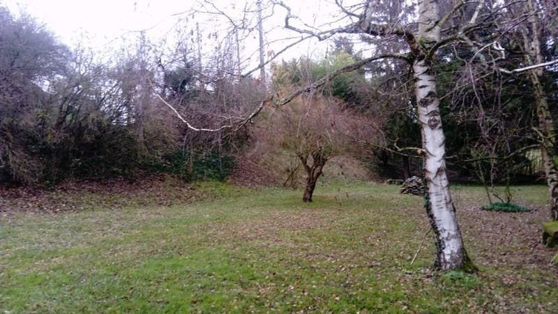 Revenda terreno Auberives sur vareze 95000€ - Fotografia 3