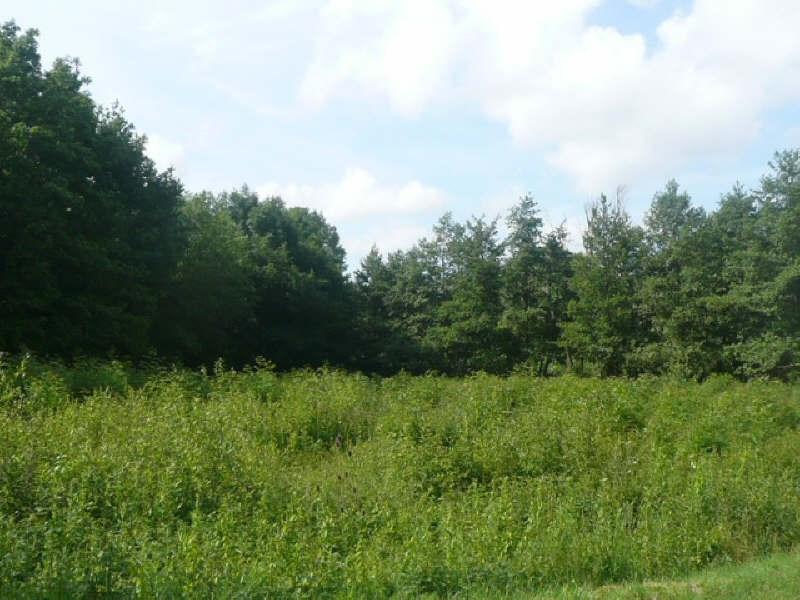 Vente terrain Sury es bois 15000€ - Photo 2