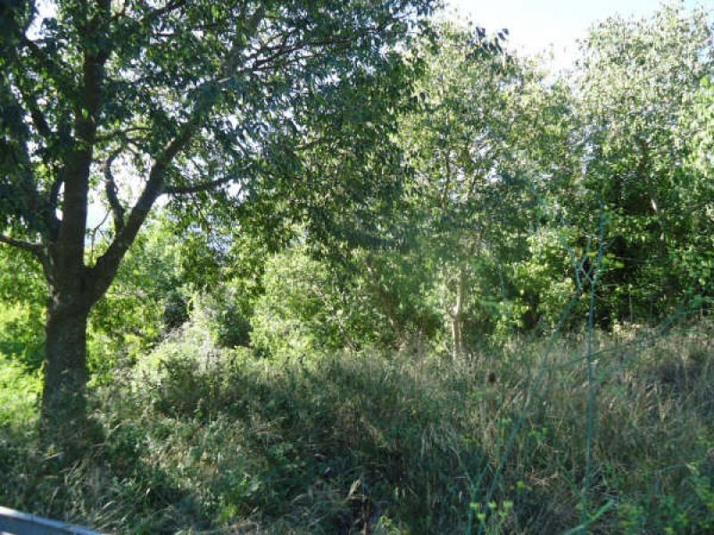 Vente terrain Reynes 120 000€ - Photo 9