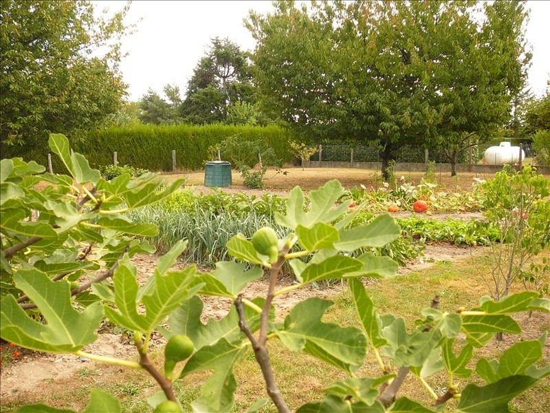 Sale site Vineuil 59400€ - Picture 1