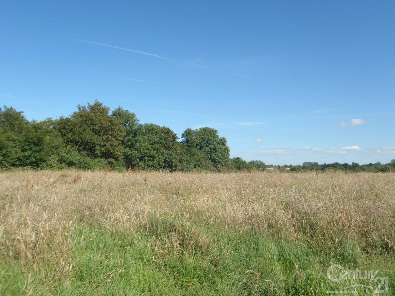 Verkauf grundstück Blonville sur mer 104000€ - Fotografie 2