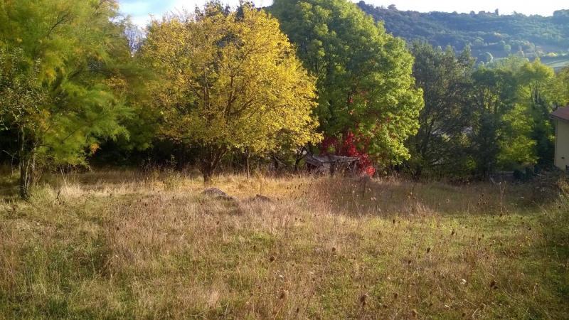 Vente terrain Brives charensac 37800€ - Photo 9