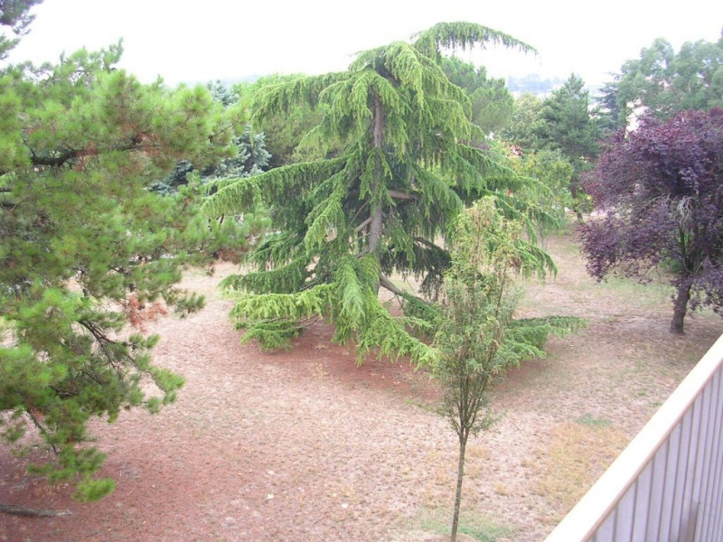Rental apartment Ramonville-saint-agne 707€ CC - Picture 2