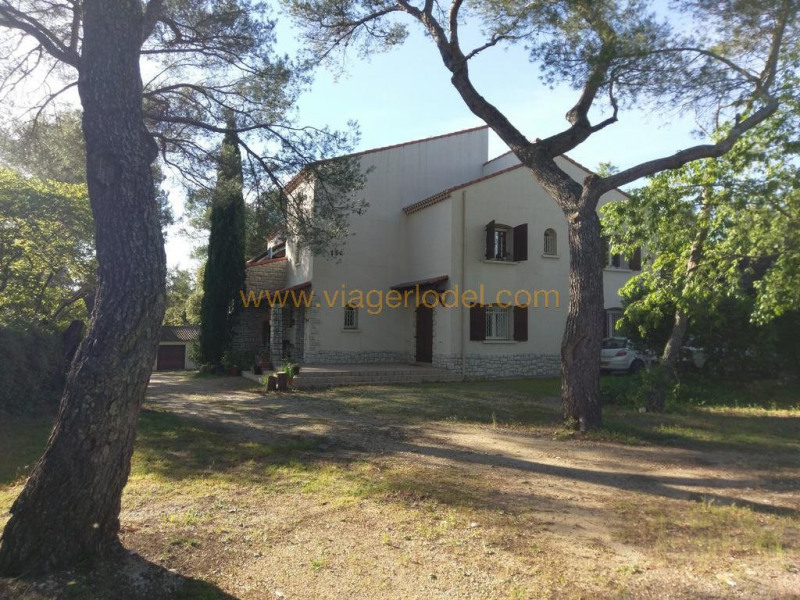 Life annuity house / villa Nîmes 440 000€ - Picture 2