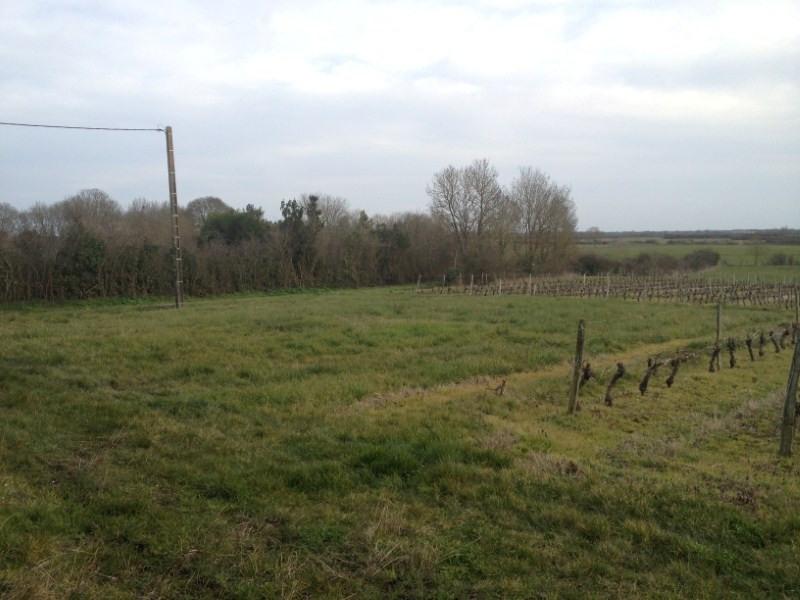 Vente terrain Jau dignac et loirac 32000€ - Photo 3