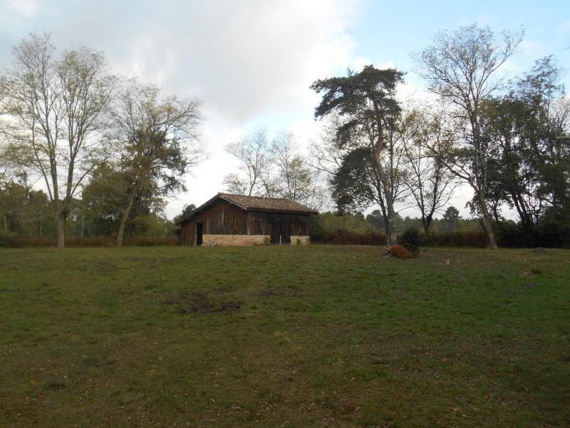 Deluxe sale house / villa Belin beliet 737000€ - Picture 15