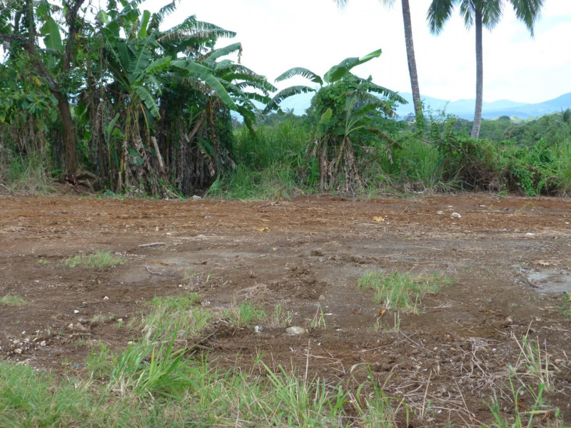 Vente terrain Lamentin 109 000€ - Photo 3