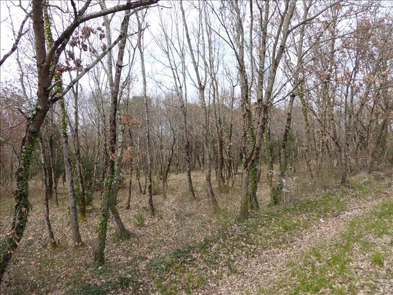 Vente terrain Montauban-est 71 000€ - Photo 3