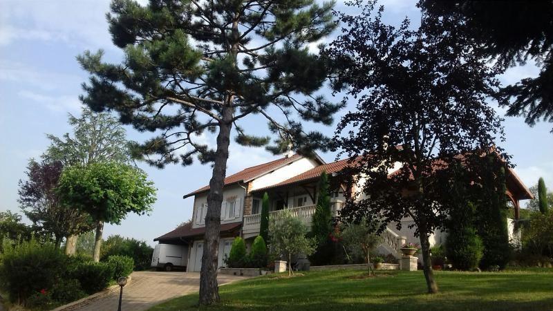 Deluxe sale house / villa Valencin 580000€ - Picture 1