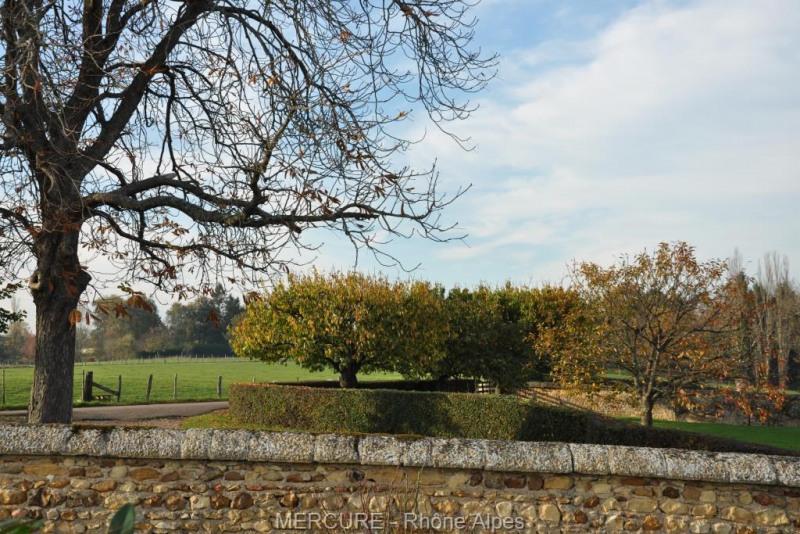Vente de prestige château Pouilly sous charlieu 850000€ - Photo 12