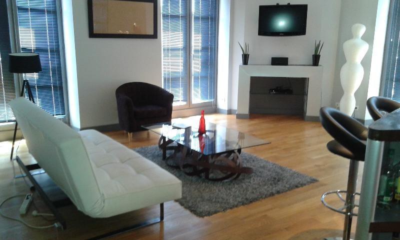 Rental apartment Toulouse 1350€ CC - Picture 1
