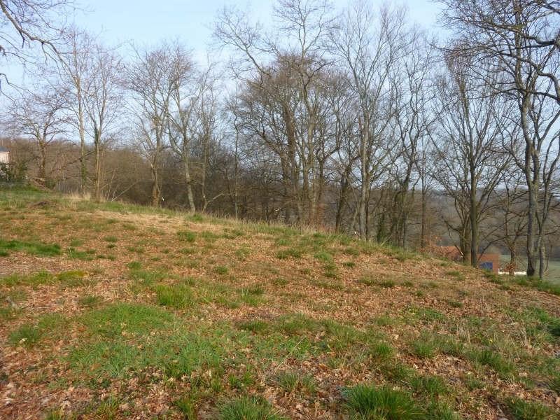 Vente terrain Artiguelouve 96000€ - Photo 3