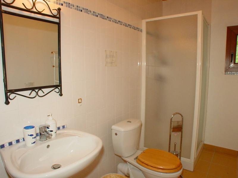 Sale house / villa St jeure d andaure 295000€ - Picture 12