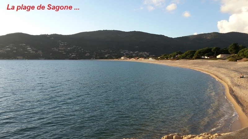Sale site Sagone 192 000€ - Picture 12