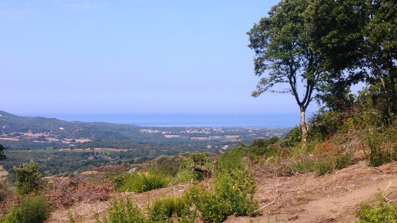 Vente terrain Eccica-suarella 180 000€ - Photo 1