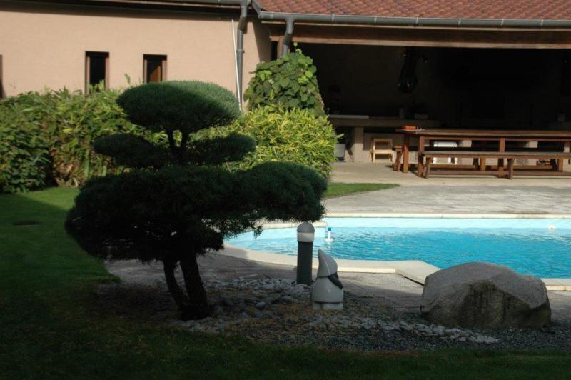 Verkauf von luxusobjekt haus Mulhouse 945000€ - Fotografie 6