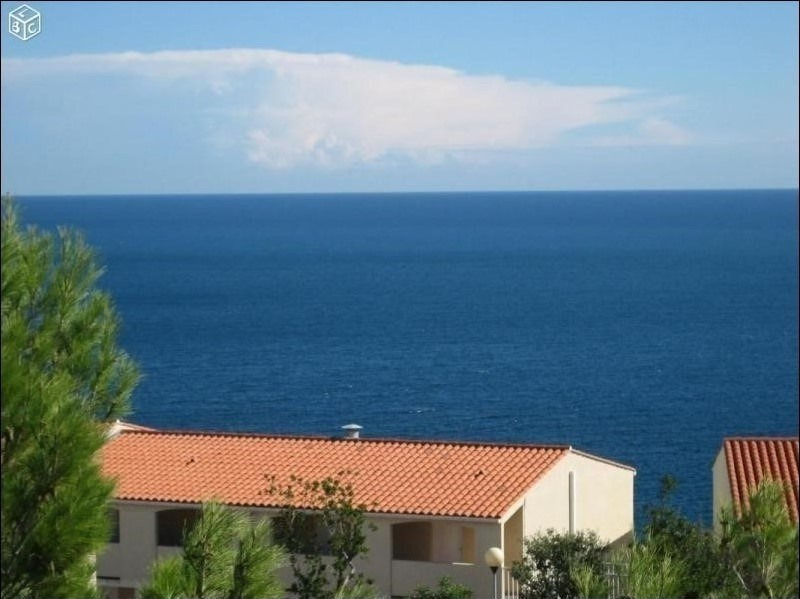 Sale apartment Banyuls sur mer 145 000€ - Picture 1