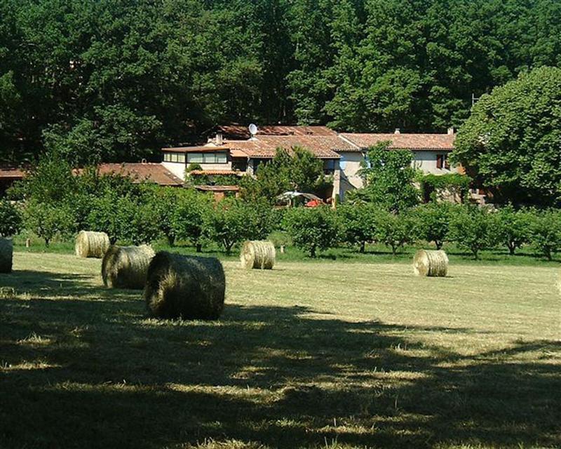 Vente de prestige maison / villa Callian 1580000€ - Photo 1