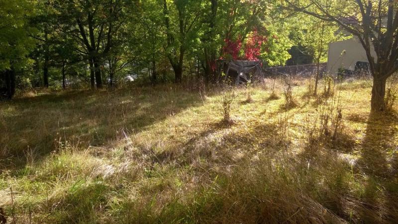 Vente terrain Brives charensac 37800€ - Photo 6