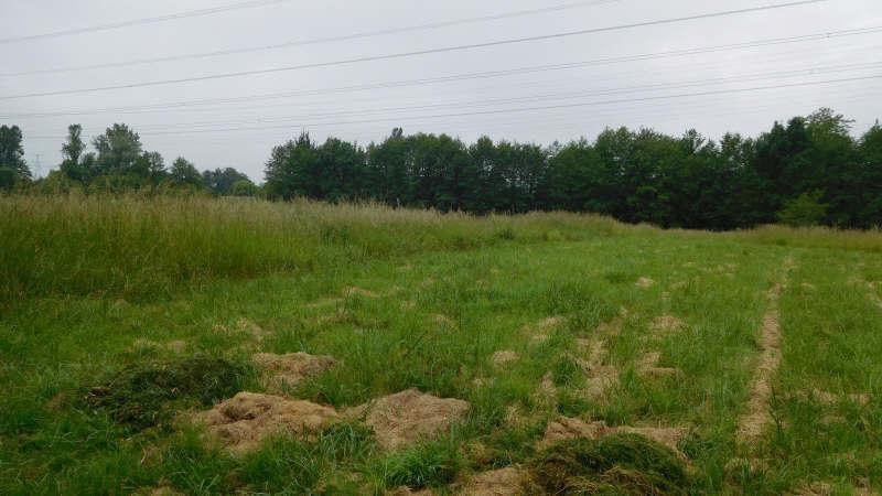 Vente terrain Cubnezais 65000€ - Photo 1