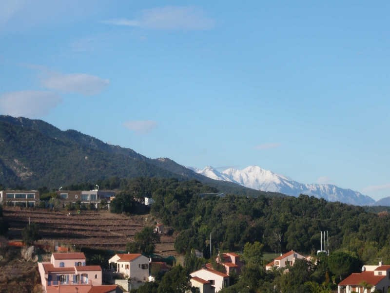 Vente terrain Collioure 199 000€ - Photo 8