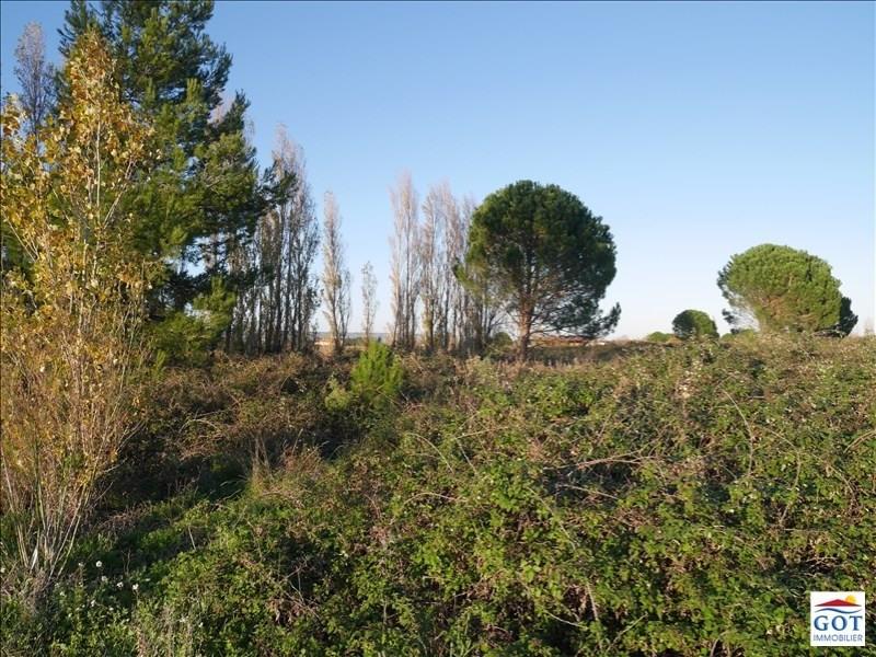 Revenda terreno St hippolyte 9500€ - Fotografia 1
