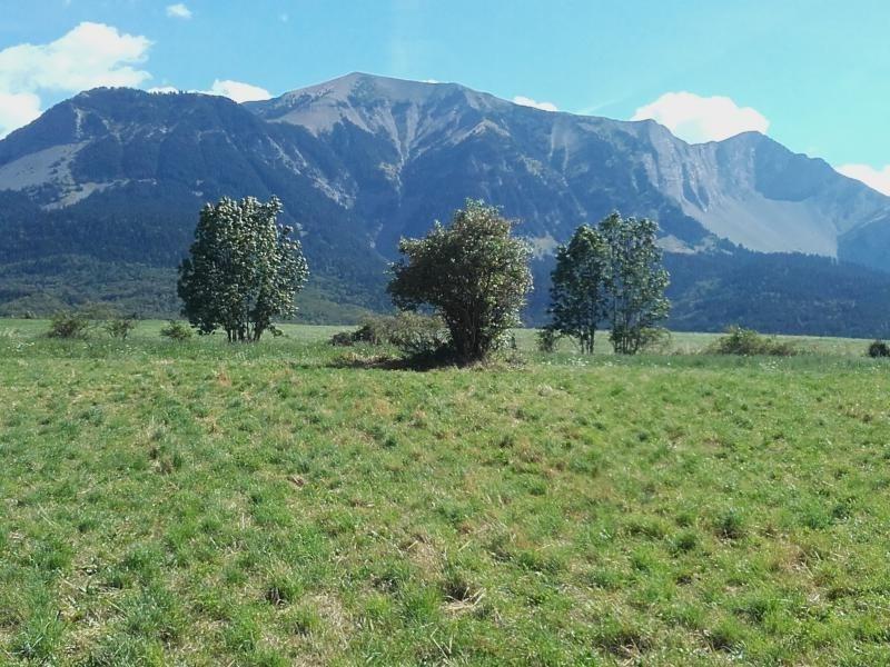 Vente terrain Poligny 95000€ - Photo 1