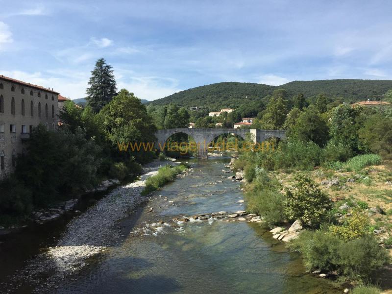 Viager appartement Ganges 85 000€ - Photo 1