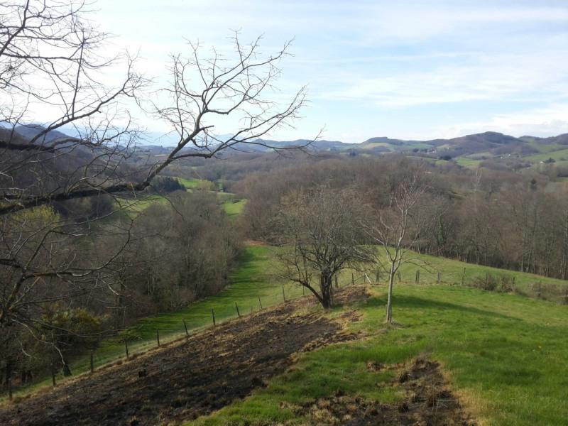 Sale house / villa Serre nerpol 340000€ - Picture 7
