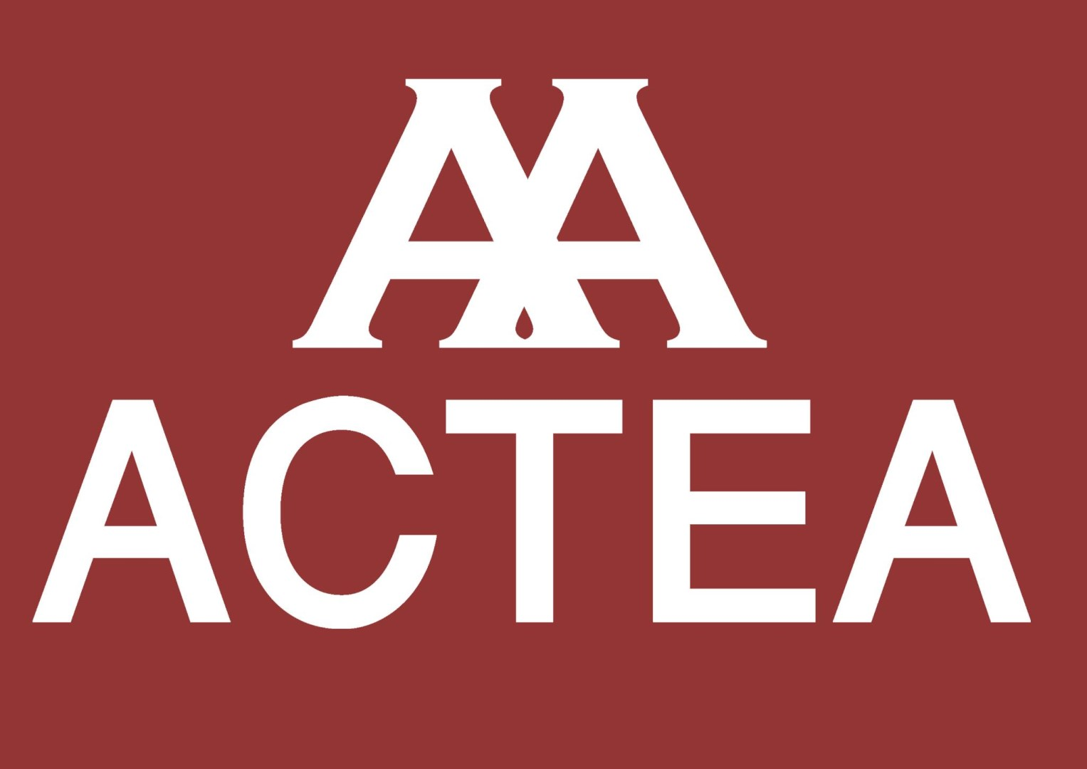 Real estate agency ACTEA in Paris