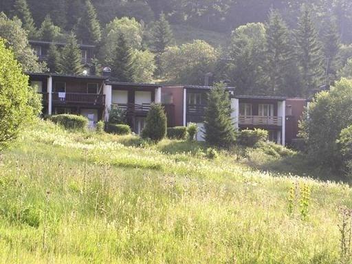 Location vacances Laveissière -  Maison - 8 personnes - Jardin - Photo N° 1