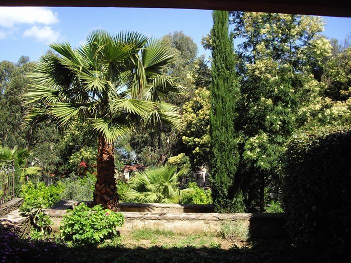 Location vacances Saint-Florent -  Appartement - 4 personnes - Jardin - Photo N° 1