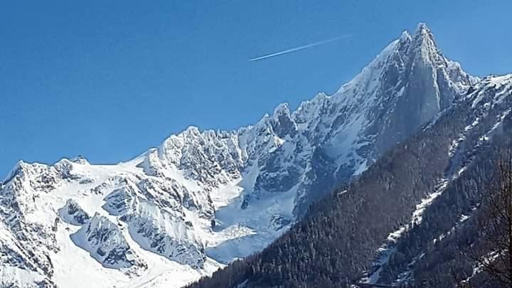 Location vacances Chamonix-Mont-Blanc -  Appartement - 4 personnes - Chaise longue - Photo N° 1