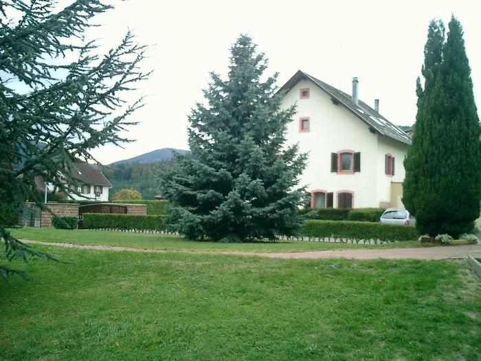 Holiday rentals Wangenbourg-Engenthal - Apartment - 4 persons - BBQ - Photo N° 1