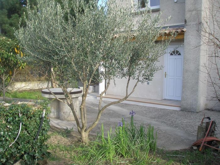 Holiday rentals Bernis - Apartment - 3 persons - BBQ - Photo N° 1
