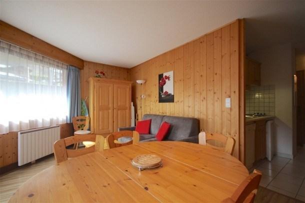 Appartement 1 chambre + coin montagne