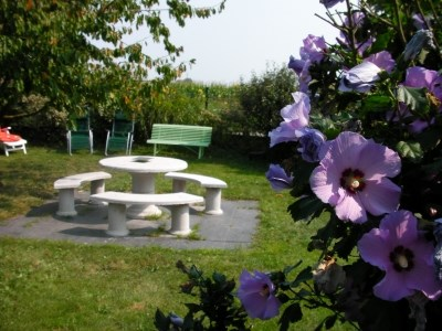 Location vacances Mussig -  Gite - 6 personnes - Barbecue - Photo N° 1