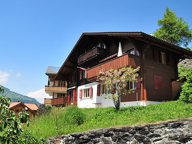 Location vacances Lauterbrunnen -  Appartement - 4 personnes -  - Photo N° 1