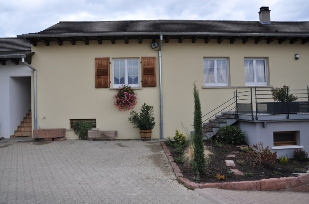 Beautiful cottage in the heart of a vineyard - Soultzmatt