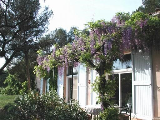 Holiday rentals Aix-en-Provence - House - 6 persons - BBQ - Photo N° 1