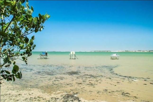 L'Île Madame, à 5mn en voiture de la maison, un paradis naturel préservé.