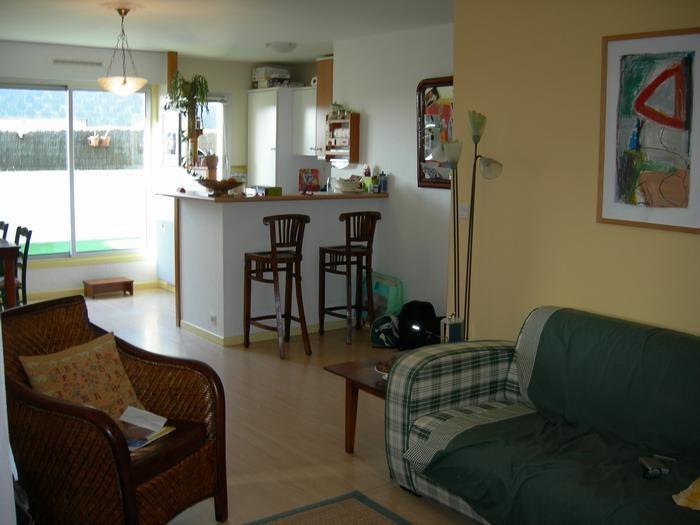 La pièce à vivre 33m2 (coin cuisine et repas,salon