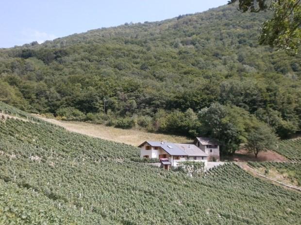Gîte Maison indépendante dans le vignoble - Chambéry