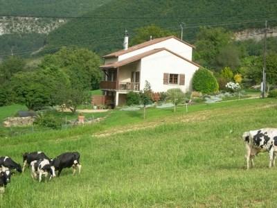 Alquileres de vacaciones Millau - Apartamento - 4 personas - Mueble de jardín - Foto N° 1