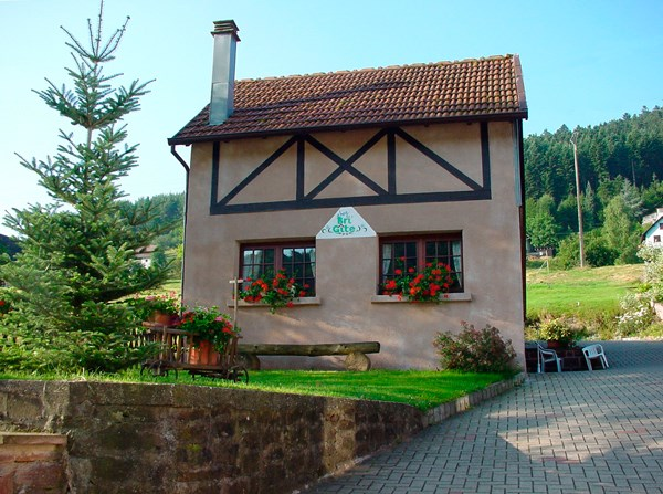 Location vacances Wangenbourg-Engenthal -  Gite - 6 personnes - Barbecue - Photo N° 1