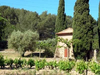 MAGNIQUE Gîte Provençal: Romance à Sanary - Sanary Sur Mer