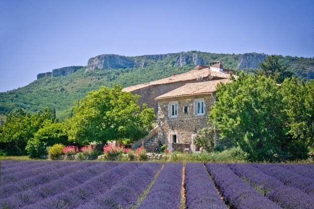 old country house ardeche meridionale - Gras